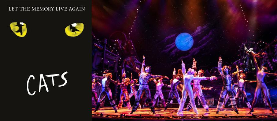 Cats at Embassy Theatre